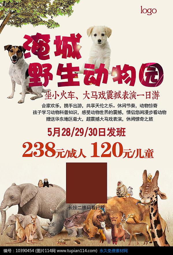 野生动物园旅游海报