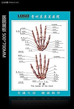 手骨 医院展板