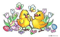 复活节可爱小鸡 郁金香 彩蛋