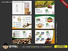 板栗食品画册