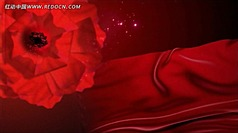 红色飘带玫瑰花瓣飞舞动态视频