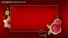 高清花朵生长片头片尾视频背景素材