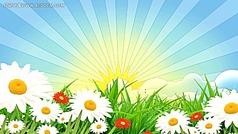 春天在哪里视频背景 美丽花丛视频