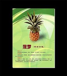 菠萝健康生活水果介绍社区展板海报挂图
