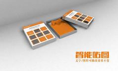 服装包装实用VI效果图模板