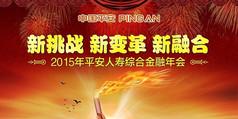 中国平安年会背景板