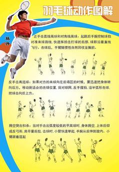 林丹羽毛球动作图解学校展板