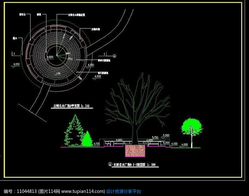 [原创] 小广场植物立面图