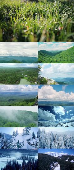 大自然森林风光高清视频素材