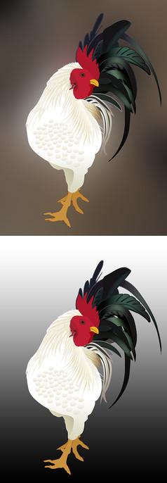白公鸡卡通形象图案