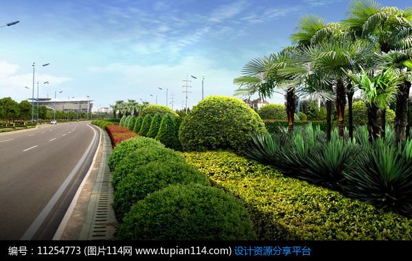 道路景观绿化图片_道路绿化景观设计_河岸绿化景观