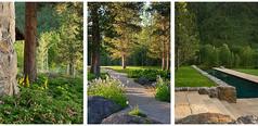 特色公园景观道路设计