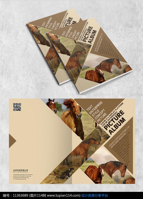 大自然动物画册封面设计模板免费下载_画册设计psd