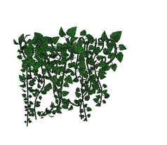绿色藤蔓植物SU