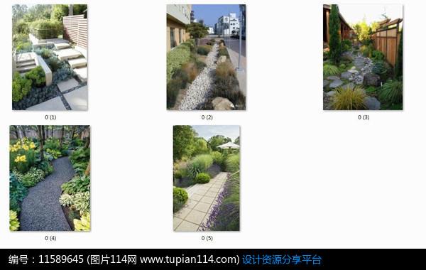 相关素材 别墅庭院设计绿化设计欧式庭院私家花园别墅花园庭院植物