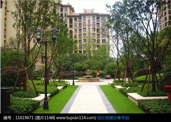 [原创] 欧式小庭院植物设计