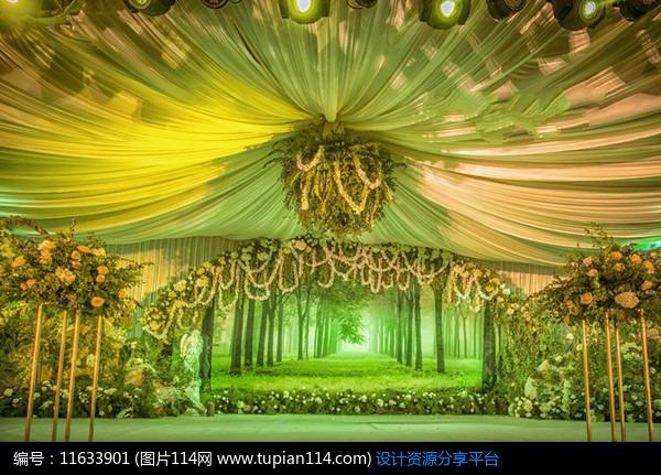 [原创] 室内森系婚礼:《绿光森林》