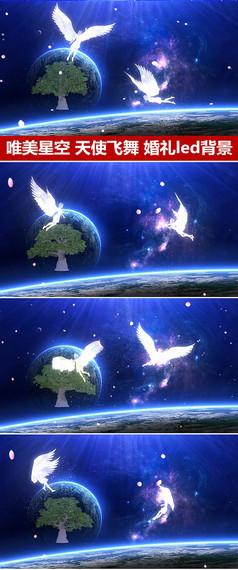 星空玫瑰花瓣天使飞舞动态视频