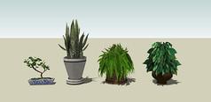 3D盆景集合素材