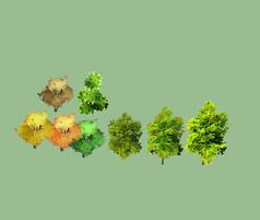 手绘风SU植物模型