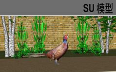 3D动物山鸡SU模型