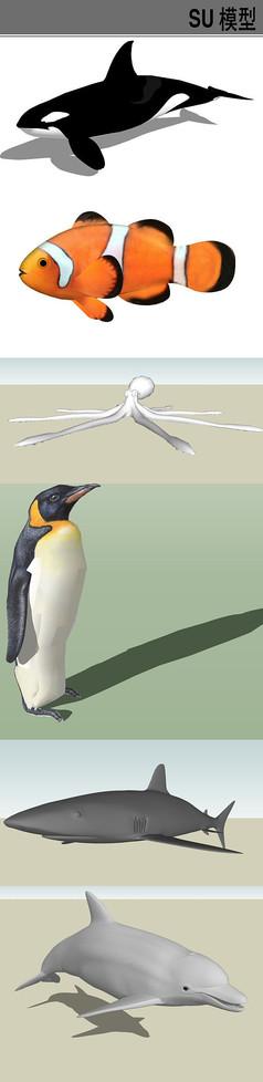 3D海洋动物SU模型合集