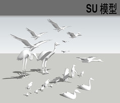 3D动物飞禽鸟类SU合集