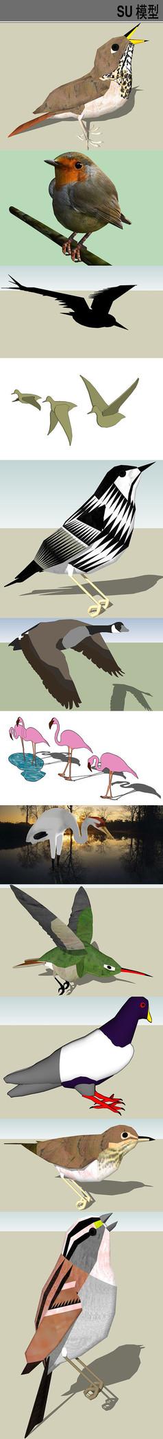 3D动物鸟类SU模型合集