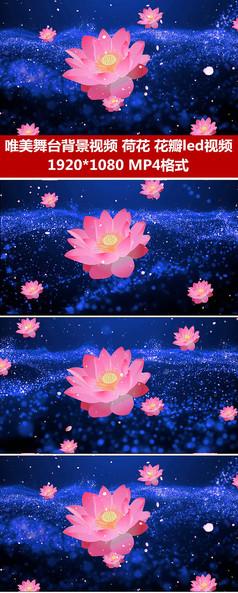 唯美蓝色粒子荷花花瓣飘落视频