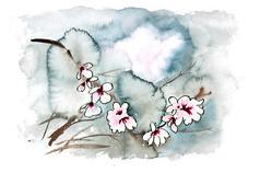 淡雅的小花插画