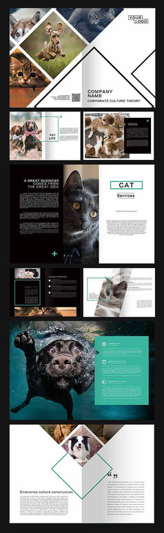 简洁商务宠物画册
