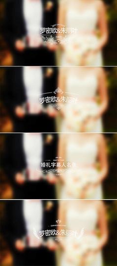 婚礼字幕标题人名条模板