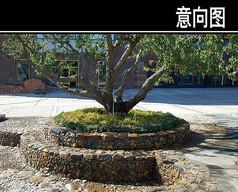 圆形大理石花池