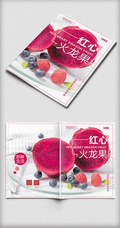 红心火龙果画册封面设计