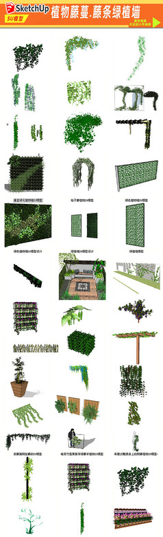 藤条绿植墙