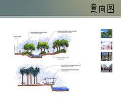 自然水景剖面图