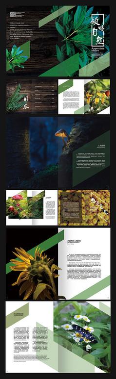 简约自然画册设计