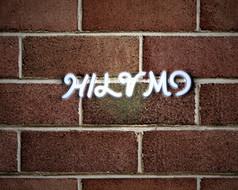 HILVMO英文字体设计
