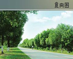 车行道绿化景观