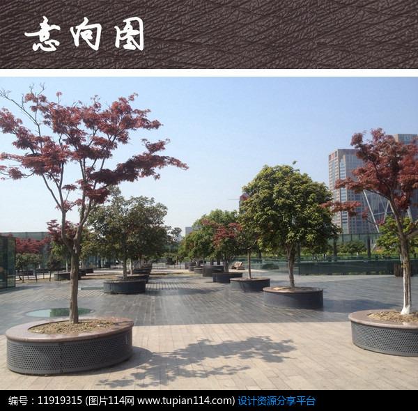 [原创] 圆形树池广场景观