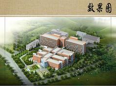 医院总体规划设计鸟瞰图