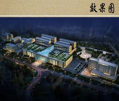 医院景观规划设计夜景鸟瞰图
