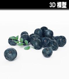 蓝莓3D模型