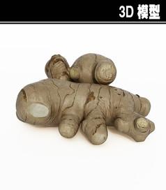 生姜3D模型