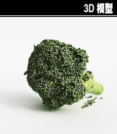 西蓝花3D模型