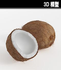 椰子3D模型