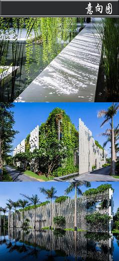 藤蔓植物白色覆盖建筑意向图