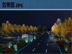 道路绿化夜景