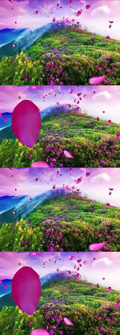 飞舞的玫瑰花瓣动态视频素材