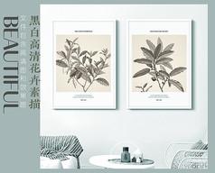 高清花卉分层装饰画